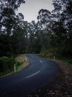 estrada sinuosa ao anoitecer