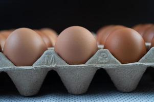 ovos de galinha colocados em uma bandeja de ovos foto