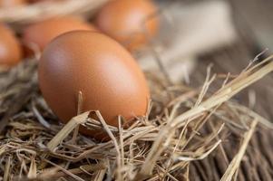 ovos crus em cânhamo e palha