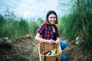 jovem agricultor colhendo aspargos frescos foto