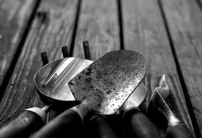 foto em tons de cinza de ferramentas de jardinagem