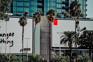 los angeles, ca, 2020 - palmeira verde perto de um prédio de concreto branco durante o dia