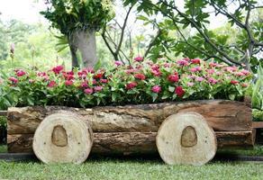 flores rosa em uma carroça de madeira foto