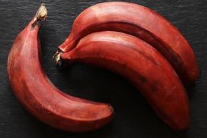 três bananas vermelhas foto