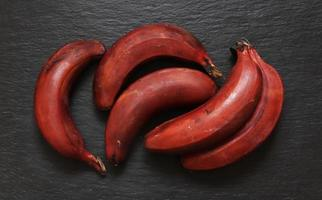 cacho de bananas vermelhas foto