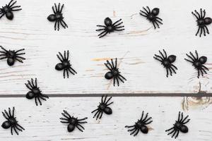 brinquedos de aranhas de plástico em um fundo de madeira.