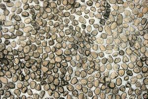 chão de seixo cinza foto