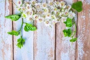 flores brancas na mesa foto