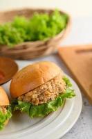 dois hambúrgueres colocados em um prato branco lindamente foto