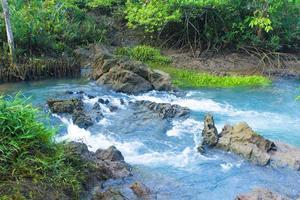 rio e pedras na floresta foto