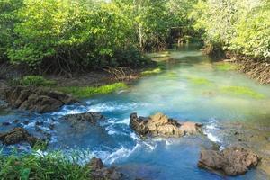 rio e floresta com céu azul nublado foto