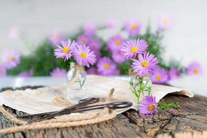 flores roxas e tesouras em uma mesa de madeira