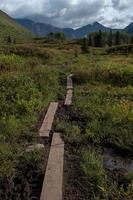 trilha de caminhada no Alasca