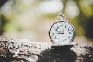close-up de um relógio de bolso em um galho de árvore do lado de fora foto