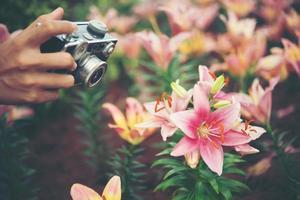 close-up da mão de uma mulher com uma câmera vintage fotografando flores em um jardim foto
