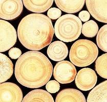 fundo de textura de log de madeira foto