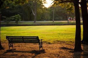 banco no parque foto