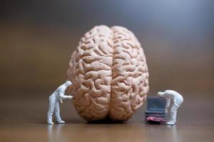 pessoas em miniatura trabalhando em um cérebro