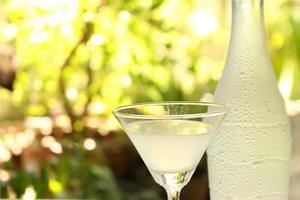 copo e garrafa de martini foto
