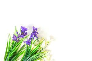 flores artificiais fundo branco