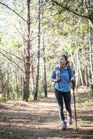 mulheres caminhando com uma mochila por uma floresta de pinheiros