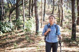mulher caminhando por uma floresta de pinheiros
