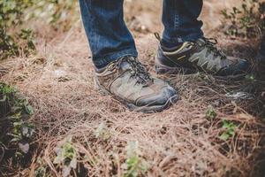 botas de alpinista na floresta