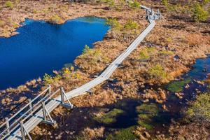 Pântano e caminho de madeira no parque nacional de Kemeri