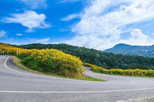 estrada em uma montanha foto