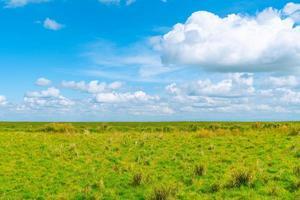 prado e nuvens foto