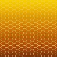 favo de mel de textura celular hexagonal foto