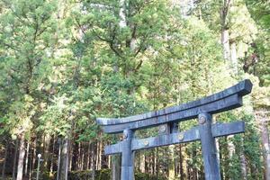 portão de pedra no santuário toshogu no Japão foto