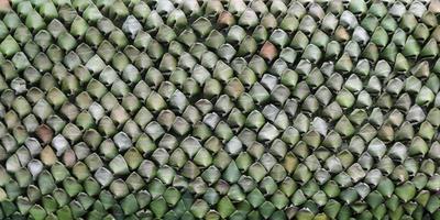 textura padrão de folha