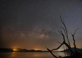 silhueta de árvores mortas ao lado de um reservatório com a Via Láctea ao fundo