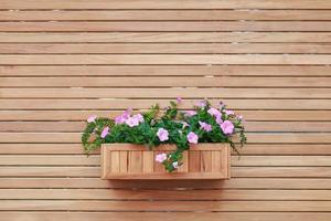 decoração retro da casa e flores e na prateleira de parede foto