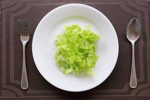 folhas de alface em um prato branco foto