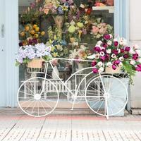 decoração de bicicleta na frente da loja
