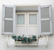 janela com plantador foto