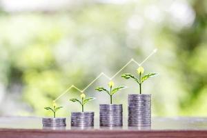 o crescimento de mudas em uma pilha de moedas inclui um gráfico que mostra o crescimento financeiro, conceitos de investimento e crescimento dos negócios foto