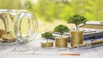 plante árvores em moedas e calculadoras, conceitos de contabilidade financeira e economize dinheiro