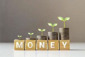 árvore em moedas e cubos de madeira com palavras dinheiro, finanças e ideias de negócios