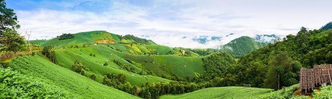 montanhas verdes exuberantes