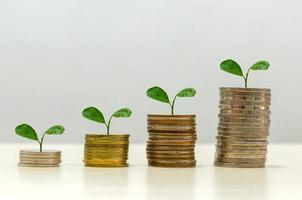árvores empilhadas em moedas