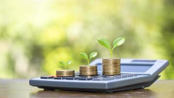 árvore na moeda e calculadora com ideias para crescimento financeiro e lucro de investimento