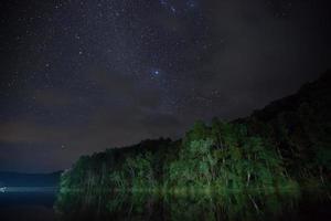 céu estrelado acima da água e árvores