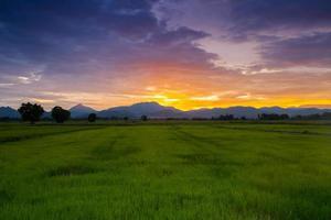 pôr do sol colorido sobre um campo verde