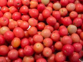 monte de tomates foto
