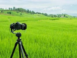 câmera de vídeo em um campo verde foto
