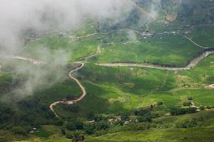 nevoeiro sobre campos de arroz