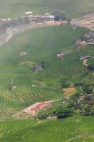 vista aérea de uma vila com campos de arroz
